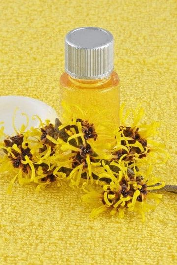 32 Surprising witch Hazel uses and Benefits.