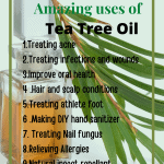 Uses and Benefits of Tea Tree Essential Oil